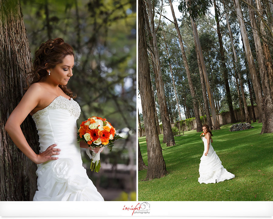 boda-en-la-corteza-01